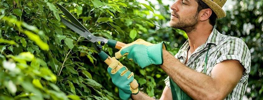 работа садовника